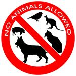 keine Haustiere erlaubt
