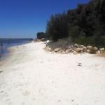 Swan River Perth - Fremantle